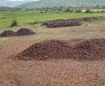 Steel Ministry for complete ban on iron ore exports