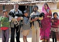 'Mehangayi Daayan...' singers settle payment issue with Aamir