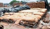 Fixing responsibility for foodgrain wastage