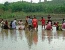 Marshy field race enthrals villagers