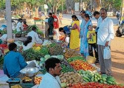 Roadside veg business popular here