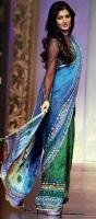 Shruti floors ramp in tarot-hued sari