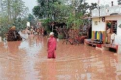 Rain fury; crop, property damaged