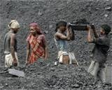 Coal India IPO subscribed within hours