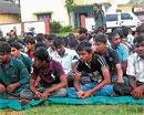Forestry students intensify stir