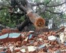 Rationalists happy over demolition of village temple