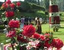Huge botanical garden proposed near Bangalore