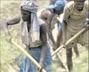 Karnataka Govt gives no guarantee on  employment