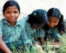 Karnataka tops in enrolment of five-year-olds