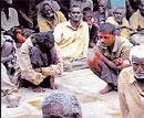 Plans to shift Beggars' colony dropped