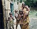 India's economic growth not reduced malnutrition:Harvard study