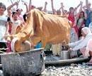 Bar girls entertain 'fatigue-hit' agitating Jats