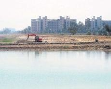 The death and rebirth of Jakkur lake