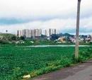 Builders, apartments killing Subramanyapura lake