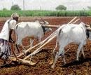 Waivers for farmers affecting loan recoveries