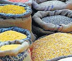 Govt to distribute cheap food to check corruption