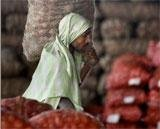 Centre lifts ban on onion export