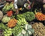 Food inflation rises to 9.13 percent