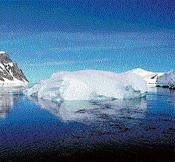 Arctic sea could be ice-free by 2015
