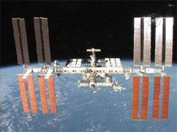 Worms on ISS mission reproduce in space