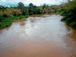 City drinks Cauvery and pollutes it too