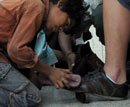 Anger over child tying shoe laces of Madhya Pradesh minister