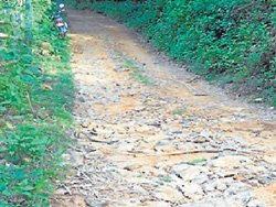 Rally to demand Kadamakal, Galibeedu road repair