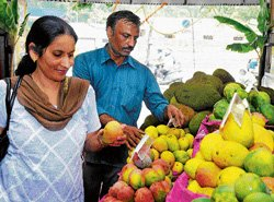 Carbide-free mangoes steal the show