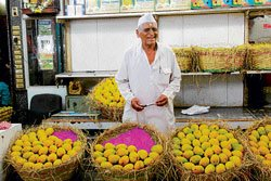 Mangoes, a status  symbol for new rich