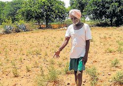 Delayed rainfall leaves farmers bankrupt