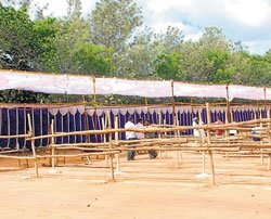 College readies for two-day event