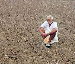 Pawar rules out drought situation