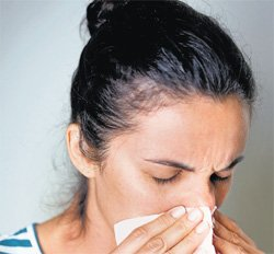 In focus: chronic sinusitis