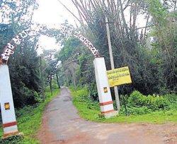 Gonikoppa Derapura tank waiting for rain