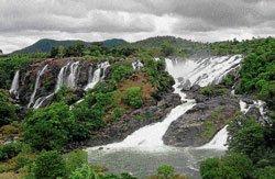 Water glory returns to Bharachukki, Gaganachukki falls