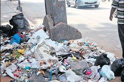Garbage contractors won't be penalised
