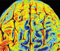Brain scan can reveal if you are lying about your age!