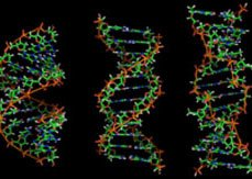 Scientists encode entire book in DNA