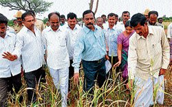 Central team at Ch'nagar for drought inspection