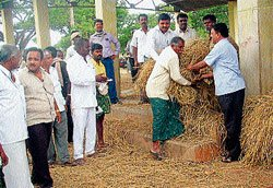 'Govt keen to protect cattle'