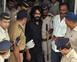 Cartoonist refuses to seek bail