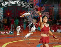 Circus comes calling to Delhi