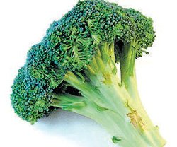Why hating broccoli  could keep you healthy