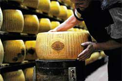 Eating cheese may harm a man's fertility: study