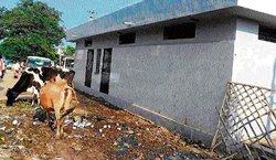 Wards lacks basic infrastructure