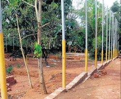 View exotic birds from close range at Pilikula