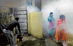 MCD dengue cases not up-to-date
