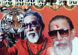 The tiger roars no more
