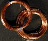 Hindustan Copper share sale nets govt Rs 810 crore