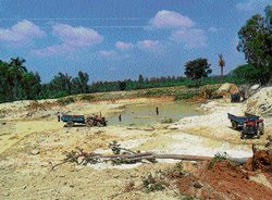 Soil mafia leads to demise of a useful pond